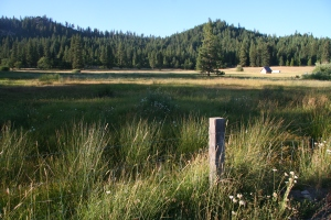 BR landscape