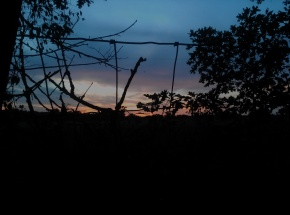 """""""That Can Stop a Heart"""": A Meditation on Fear and an ElectricFence"""