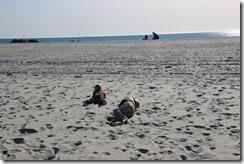 julia beach
